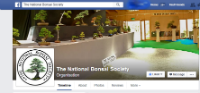 The National Bonsai Society Facebook page
